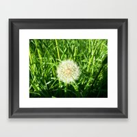 Dandelion Remnants Framed Art Print