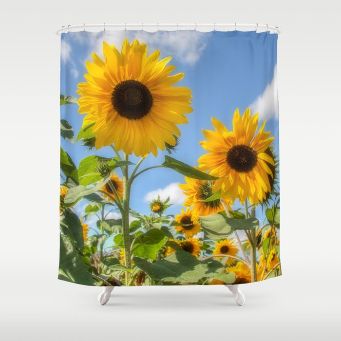 Sunflowers Shower Curtain By David Tinsley