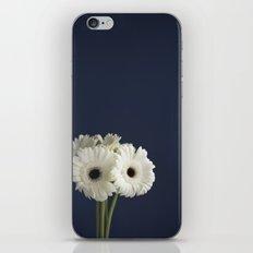 Gerbera Daisies iPhone & iPod Skin