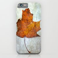 Autumn-Leaf iPhone 6 Slim Case