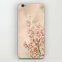 Pink Spring iPhone & iPod Skin