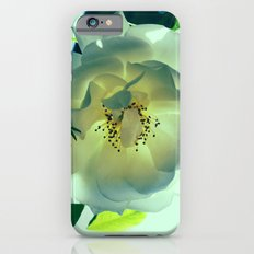 White Rose Slim Case iPhone 6s