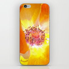 rose macro abstract IV iPhone & iPod Skin
