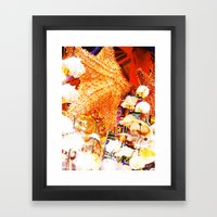 Sea Shells Print Framed Art Print