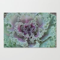 Cabbage Fractal Canvas Print