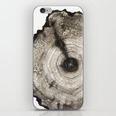 cross-section I iPhone & iPod Skin