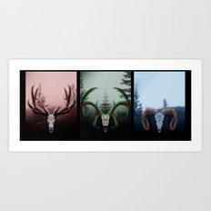 C Horns Art Print