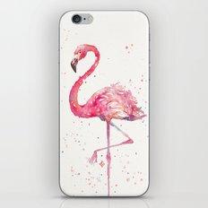 A Flamingos Fancy iPhone & iPod Skin