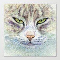 Green-eyes cat 875 Canvas Print