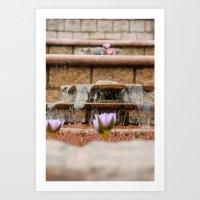 Fountain Flowers Art Print