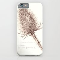 Wild Teasel botanical poster iPhone 6 Slim Case