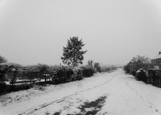 Snowy Lane #1 Art Print