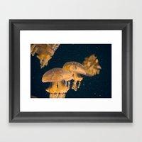 Aquatic Dance Framed Art Print