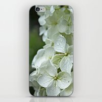 Pretty Flowers iPhone & iPod Skin