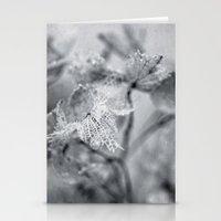 Winter Hydrangea Stationery Cards