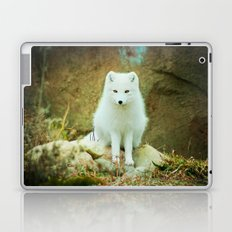 Snow fox Laptop & iPad Skin