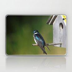 Barn Swallow Laptop & iPad Skin