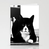 Black Cat Stationery Cards