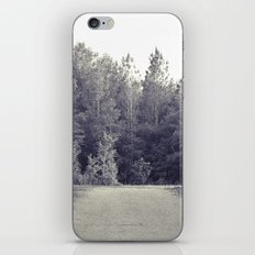 A Quiet Forest iPhone & iPod Skin