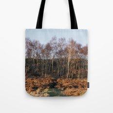 Birch trees basked in warm light at sunset. Upper Padley, Derbyshire, UK. Tote Bag
