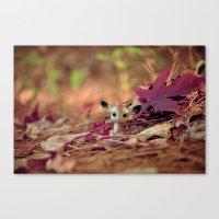 Hidden (Little Deer) Canvas Print