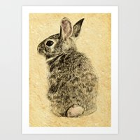 rabbit Art Prints featuring Rabbit by Anna Shell