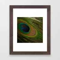 Peacock Eye Framed Art Print