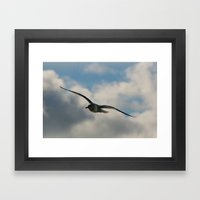 Graceful Wings Framed Art Print