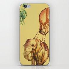 Elephants iPhone & iPod Skin