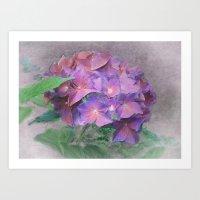 Blüten Traum Art Print