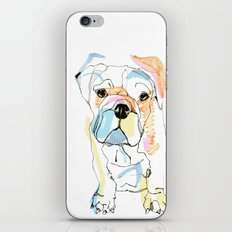 Bulldog Colour iPhone & iPod Skin