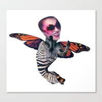 ZEBRA FLY Canvas Print