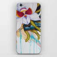 A Cornucopia of Sharp Delights iPhone & iPod Skin