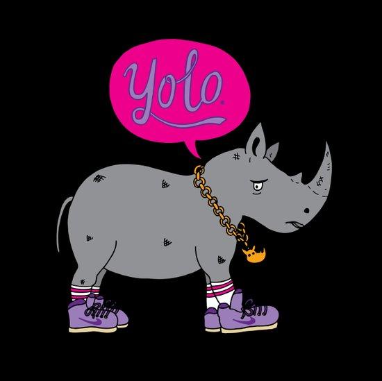 Yolo Rhino Art Print