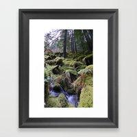 Land Of Moss & Water Framed Art Print