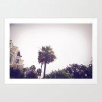 palm::charleston Art Print