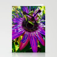 Fuchsia Flower Stationery Cards