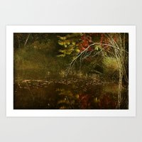 Weeping Branches Art Print