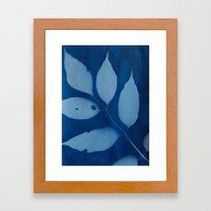 Leaf Print  Framed Art Print