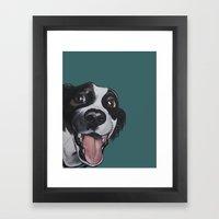 Maeby The Border Collie … Framed Art Print