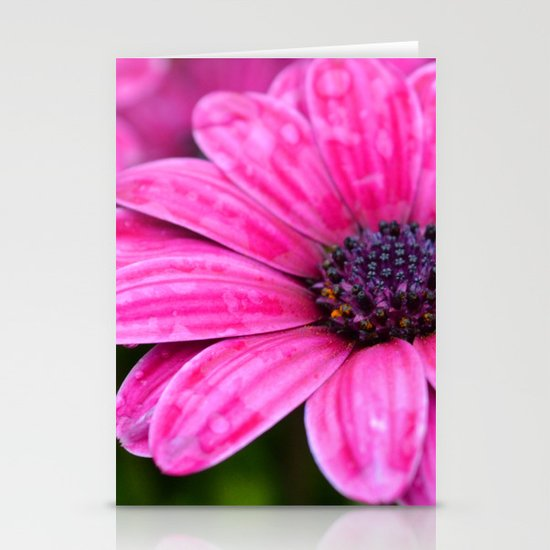 Purple Stationery Card