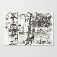 North Woods Sketch Canvas Print