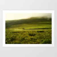 Sheep in the mist Art Print
