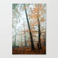Forest Colors Canvas Print