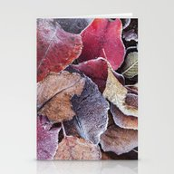 Frosty Ground Cover Stationery Cards