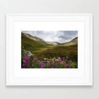 Fireweed & Fall in Alaska  Framed Art Print