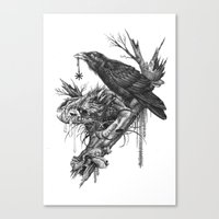Wolf Skull and Raven. Canvas Print
