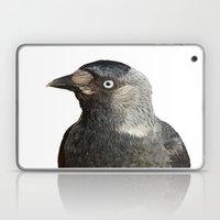Jackdaw (Corvus Monedula… Laptop & iPad Skin