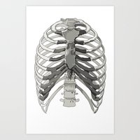 Vector Ribcage Art Print
