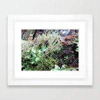 Rainforest No.6 Framed Art Print